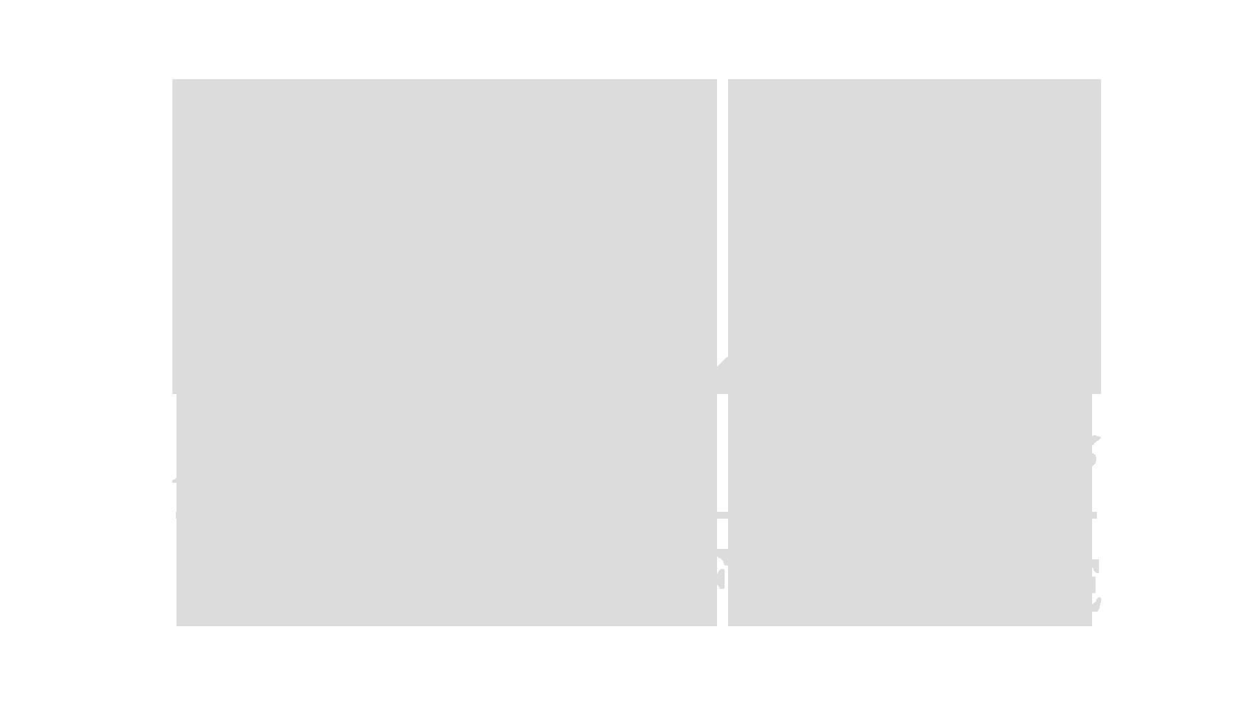 FRENCHREP